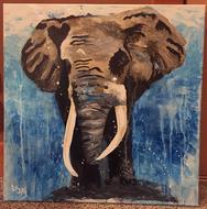 Savannah's Elephant
