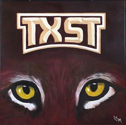 tx state bobcats