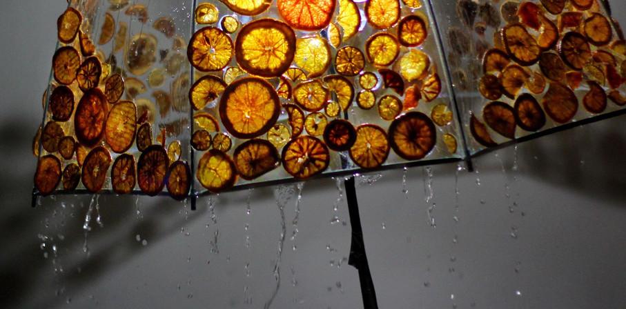 Real Citrus Umbrella