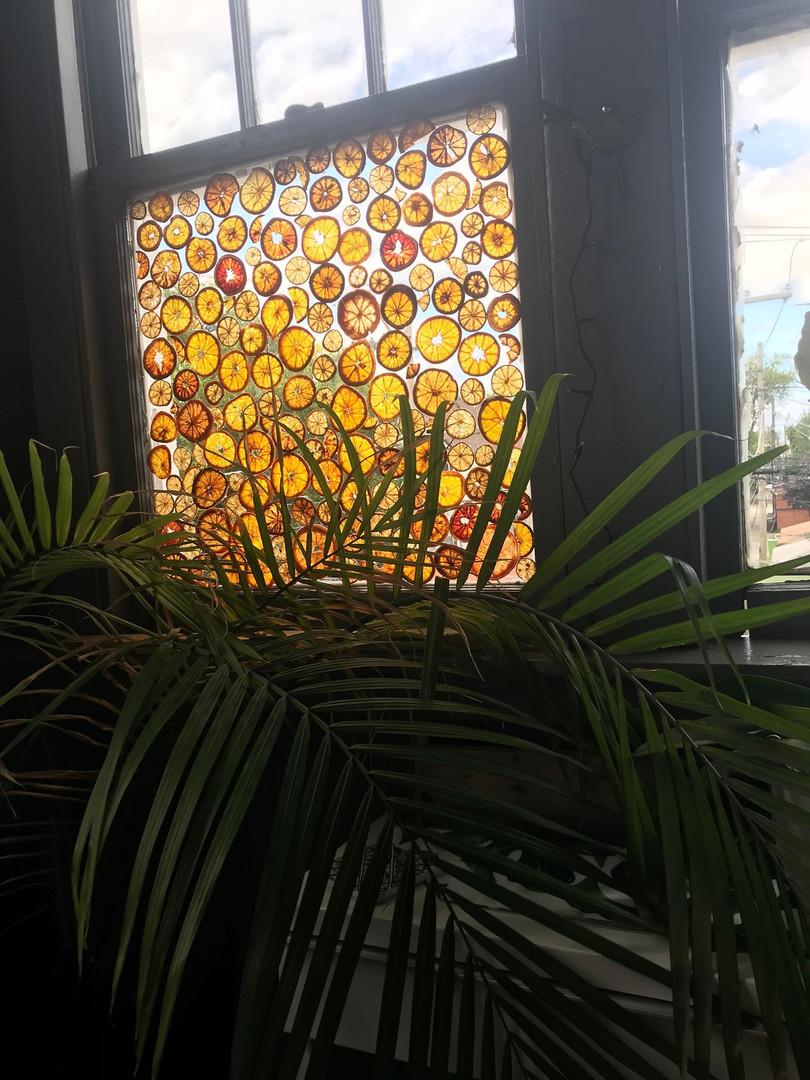 Citrus Window