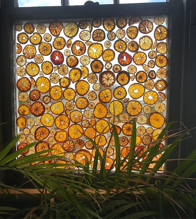 Window installation!!!!!!!!!!.jpg