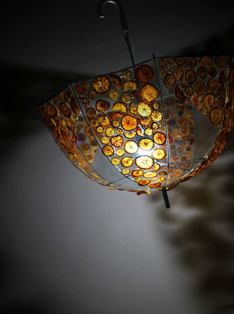 Citrus by Talia - Umbrella
