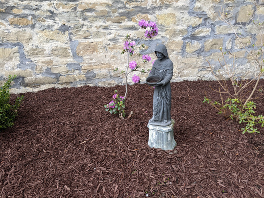 St. Francis in one of our gardens