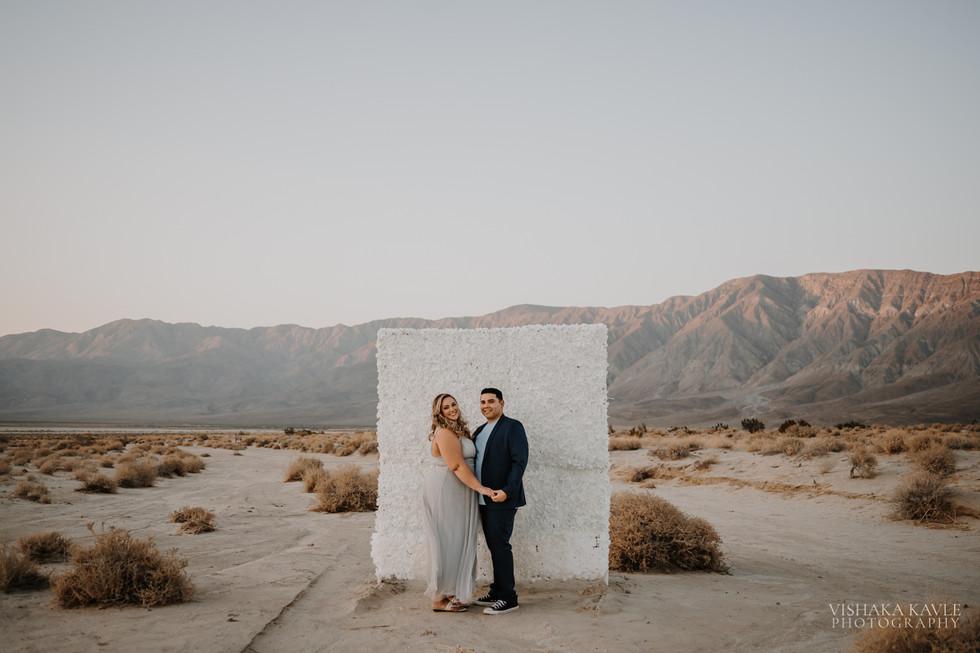 Tiffany & Ceaser Engagement -86.jpg