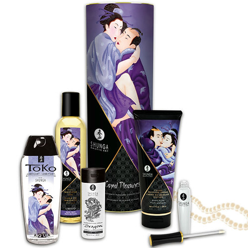 Shunga Carnal Pleasure Set
