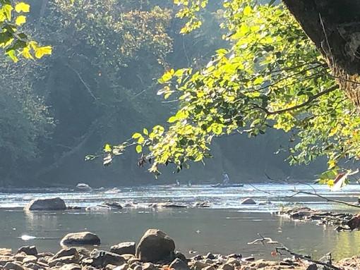 BMA summer river.jpg