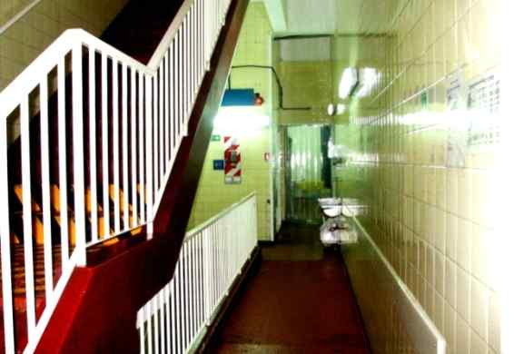 Escalera de Ingreso
