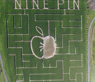 2019 Nine Pine Cider Corn Maze