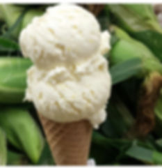 Sweet Corn Ice Cream.JPG
