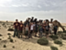 Camping in Doha, Qatar Boy Scouts find wild Camels.
