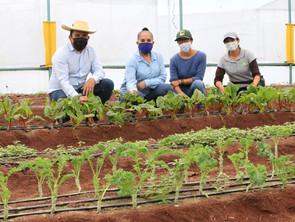 Ruta para el fortalecimiento de la vocación agrícola de Michoacán debe mantenerse: Julieta Gallardo