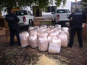 En el mes de agosto, aseguró SSP más de 430 kilogramos de diferentes drogas
