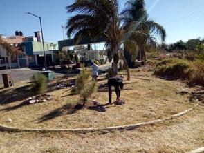 Gobierno Municipal continúa transformando espacios públicos y áreas verdes de Morelia