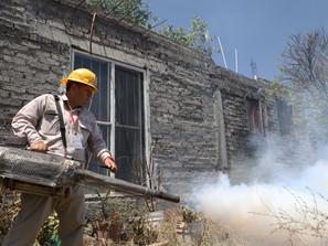 Exhorta SSM a michoacanos a mantener patios y azoteas limpias para prevenir dengue