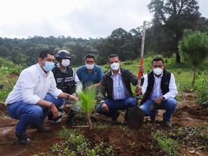 Gobierno de Michoacán certifica a Cerro Grande como Área Voluntaria para la Conservación
