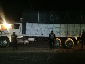 Asegura SSP tractocamión robado con aguacate, en Uruapan