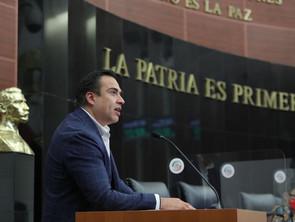 Urge plataforma digital para comercializar      artesanías: Senador Marco Trejo