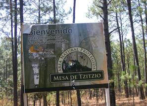 La Mesa de Tzitzio, área natural protegida que forma parte del patrimonio natural de Michoacán