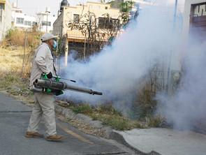 SSM no dará tregua al dengue
