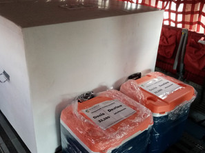 Llega a Michoacán vacuna COVID con temperatura fuera de la norma. Federación valida su aplicación.