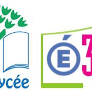 Pique Nique de cloture des Eco délégués