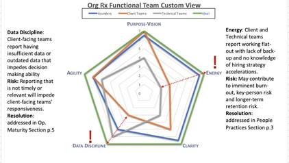 Custom View: Org. Pulse Check