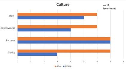 Culture Assessment