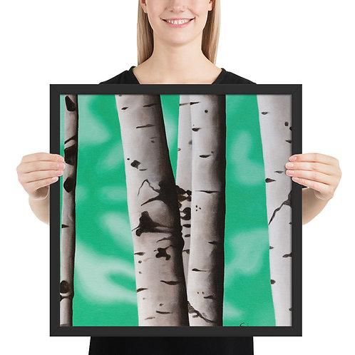 Birch Tree 1 - Framed