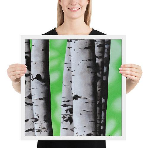 Birch Tree 2 - Framed