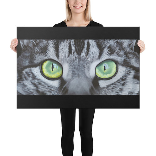 "'Eye-scape' - Wide - 24x36"" Canvas Print"