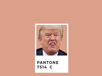 PANTONE CULTURE