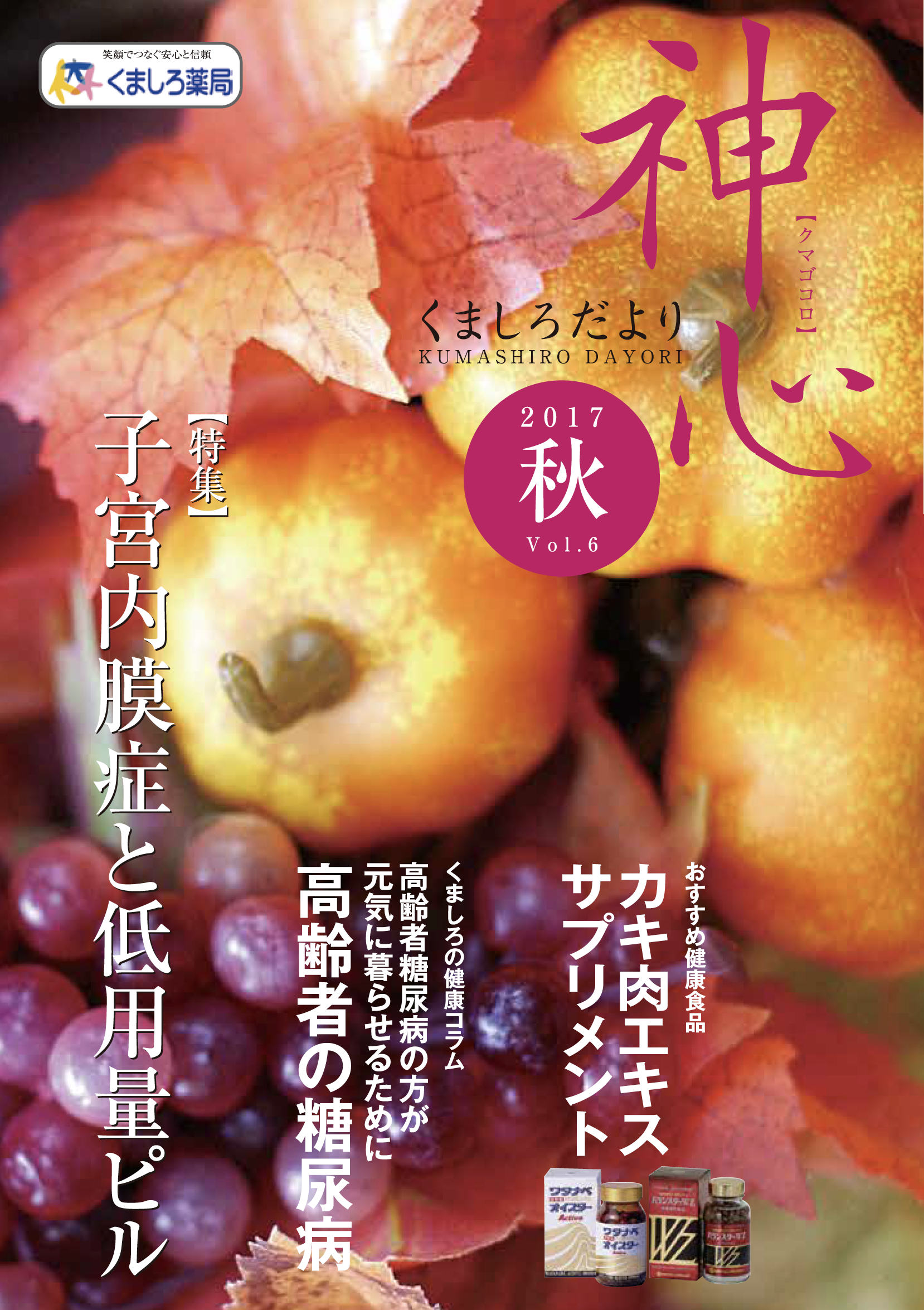 Vol.6(2017年秋号)