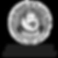 American Board of Plastic Surgery Logo | Lubbock, Tx | Arledg Aesthetics
