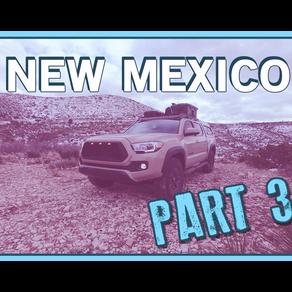 [NM3] WHEN A WOLF HEARS A MEOW