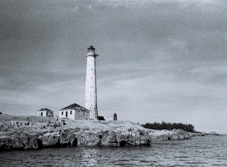 THE ENCHANTED ISLAND - WDP TRIP 6