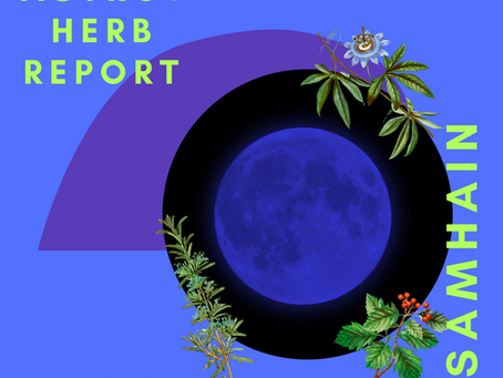 Samhain Astrological + Herb Report 10/31/20