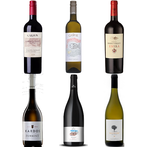 Joy of Wine Around the World Taster Selection-  CASE OF 12 BOTTLES