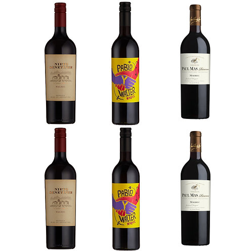 Mixed Malbec Selection - case of 6 bottles
