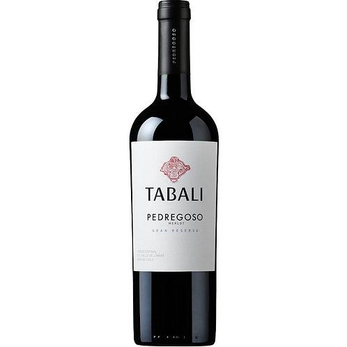 Tabalí Pedregoso Gran Reserva Merlot, Maipo, Chile 2019 - Case of 6 Bottles