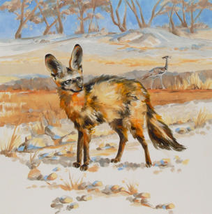 Fungi the Bat-Eared Fox