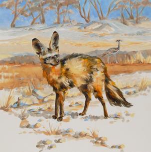 Fungi the Bat-Eared Fox