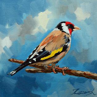 Goldfinch No 2