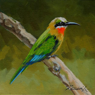 Red throated Bee Eater