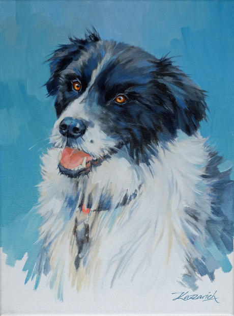 Lewis Morris's Border Collie 2403X2.jpg