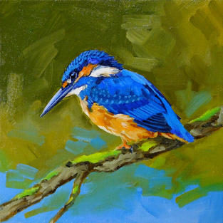 Kingfisher No1