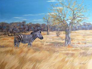 'Zebra and the magic tree'