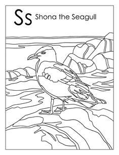 Shona the Seagull