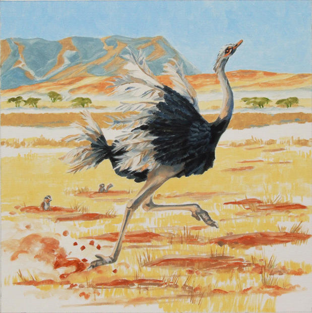 Oscar the Ostrich