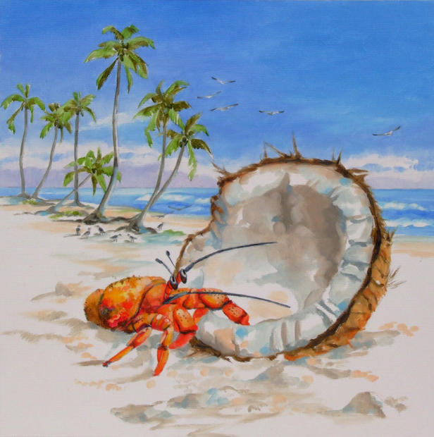 Henry the Hermit Crab