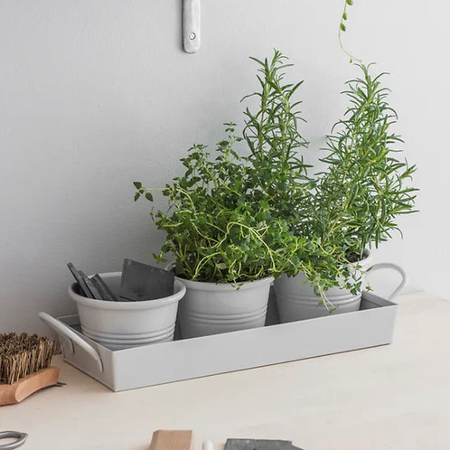 Set of 3 pots on a Tray